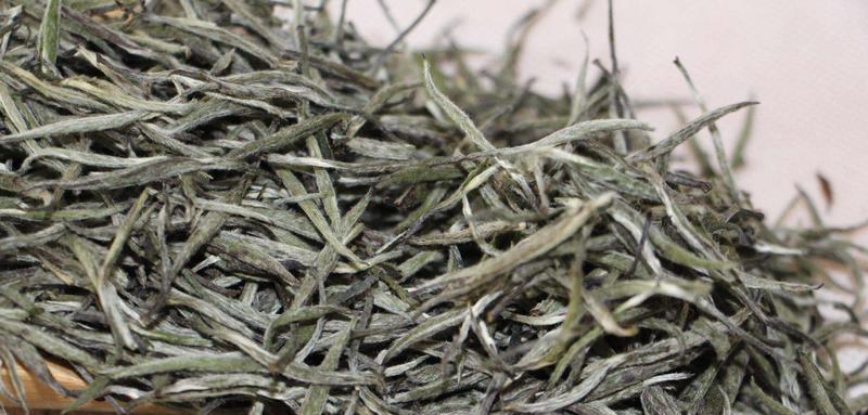 来到2019年长春茶叶博览会看白毫银针
