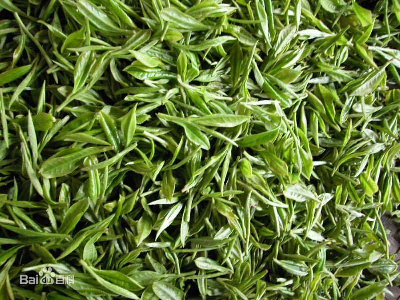 长春茶博会之绿茶